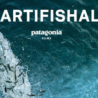 Artifishal Documentary Movie Screening and Panel Discussion