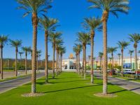 Thanksgiving at Capitata Buffet in Spotlight 29 Casino