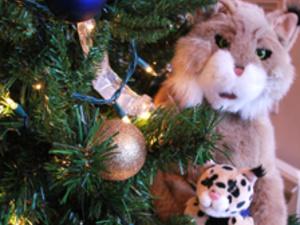 Pitt-Greensburg Student Alumni Association Holiday Brunch