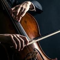 Juxtaposed: Ken Kulosa, cello