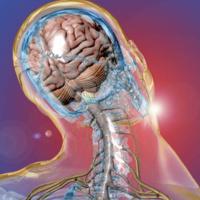 18th Annual Neurotrauma Symposium