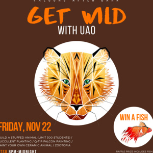 After Dark with UAO and Falcons After Dark