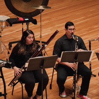DePaul Ensemble 20+ Concert Inspired by Architecture: Scores, Plans, and Paintings