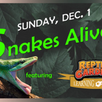 Learning Forum: Snakes Alive