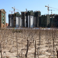 Opportunities and Challenges in China's Carbon Market: From Model to Reality