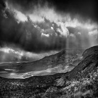 Michael Singer Photography