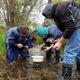 Watershed Stewardship