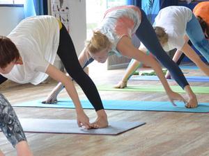 200 Hour Yoga Training Program in Rishikesh