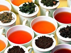 Stress Free Zone: Tea Tastings