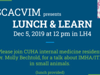 Lunch and Learn: Internal Medicine