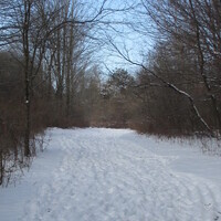 Discovery Hike - McDermott Trail