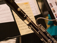 DeKalb Symphony Orchestra: Children's Concert