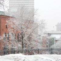 Wintersession 2020 Final Grades Due