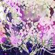 MFA Exhibition | Rachel Horner: Entanglement