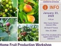 Home Fruit Production Workshop