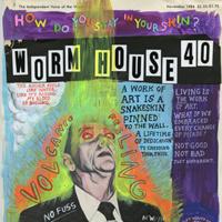 Worm House 40