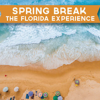 Spring Break: The Florida Experience - Registration