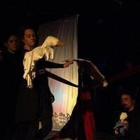 Blood from a Turnip—a puppet salon