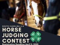 Open Registration for SC 4-H Horse Judging