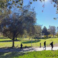 Aldrich Park