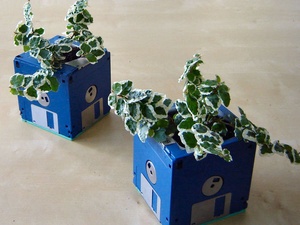 Planter Making With Recycled Materials