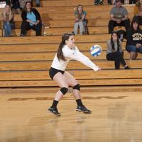 (Women's Volleyball) Wayne State vs. Michigan Tech