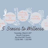 5 Senses to Wellness