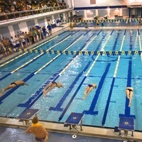 University of Delaware Men's Swimming & Diving at Towson University