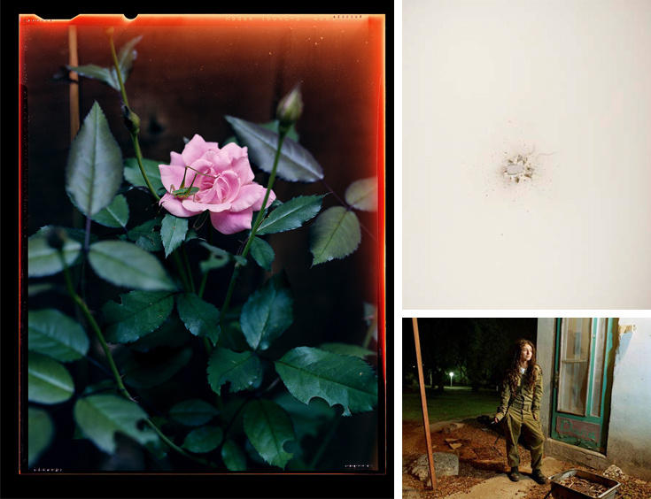 Opening Reception: re:collection