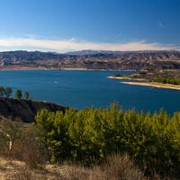 Castaic Lake Bird Walk