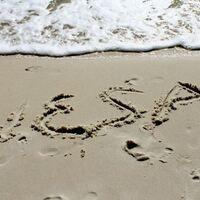 VESA (Valencia Earth Studies Association)