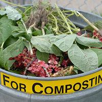 Good Trash Behavior:  Composting