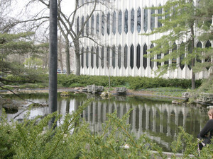 View of the koi pond outside of Bibbins