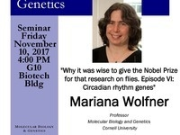"MBG Friday Seminar with Mariana Wolfner ""Why it was wise to give the Nobel Prize for that research on flies. Episode VI: Circadian rhythm genes"""