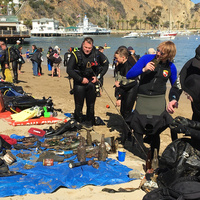 37th Annual Avalon Underwater CleanUp