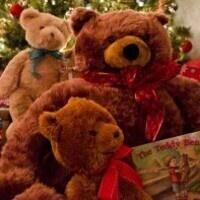Teddy Bear Suite