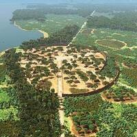 Garden Forests of the Amazon: Ancient Civilization and Modern Legacies