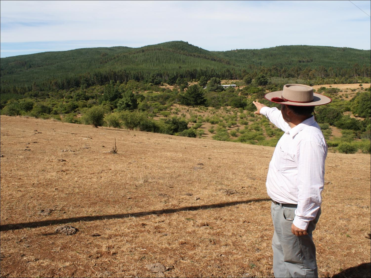 Cristián Alarcón Ferrari: Climate Change, Land Use, and the Contradictions of Forestry Development in Chile and Sweden