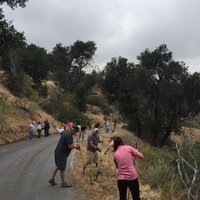 Trails & Open Space Beautification Projects