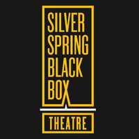 Silver Spring Black Box Theater