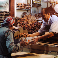 Whither Seasons in our Fast Food Lives: Reflections on Islamic ritual memory and the season's first fruits in Turkey