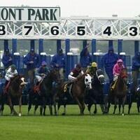 Belmont Park Racetrack