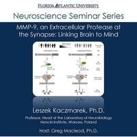 Neuroscience Seminar Series - Leszek Kacamarek, Ph.D.