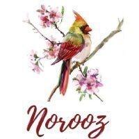 Norooz   Persian New Year Celebration