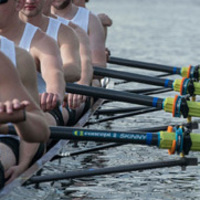 Men's Rowing at Kerr Cup | Athletics