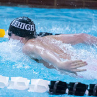 Men's Swimming and Diving vs Brown and White Meet | Athletics