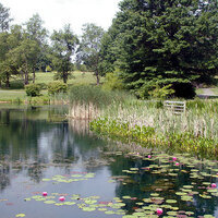 Bohrer Park at Summit Hall Farm