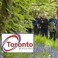 Guided Walking Tour through Toronto Ravines