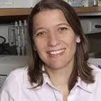 Epigenetic Regulation in Normal and Malignant Hematopoiesis