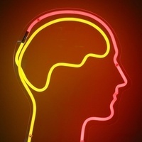 Fearful of snakes, spiders, or germs/contamination? Seeking participants for study of tDCS brain stimulation for reducing fear and anxiety.